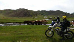 Magic Mongolia Blog – July 2018 – By Peter Grace – Part #3